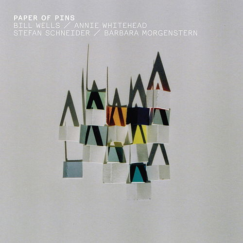 Paper Of Pins by Barbara Morgenstern