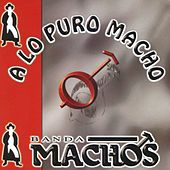Play & Download A Lo Puro Macho by Banda Machos | Napster