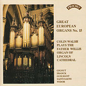 Play & Download Great European Organs No.15: Lincoln Cathedral by Colin Walsh | Napster