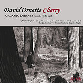 Organic Journey: On The Right Path by Various Artists