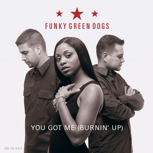 Play & Download You Got Me Burnin' Up by Funky Green Dogs | Napster
