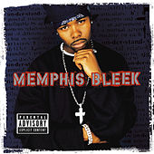 The Understanding by Memphis Bleek