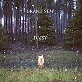 Play & Download Daisy by Brand New | Napster