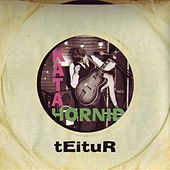 Play & Download Káta Horni∂ by Teitur | Napster