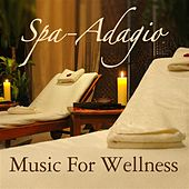 Play & Download Spa-Adagio: Music For Wellness by Various Artists | Napster