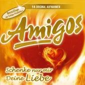 Schenke nur mir deine Liebe by Los Amigos