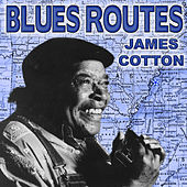Blues Routes James Cotton by James Cotton