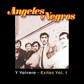 Play & Download Y Volvere: Exitos Vol. 1 by Los Angeles Negros | Napster
