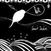 Sweet Jardim - Tiê by Tiê
