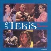 En Concierto by Los Tekis