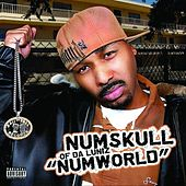 Numworld by Numskull