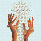 Play & Download An Exaltation of Laarks by Laarks | Napster