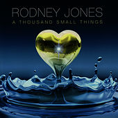 A Thousand Small Things by Rodney Jones