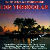Los 10 Exitos Con Technoband by Los Terricolas
