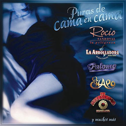 Play & Download Puras De Cama En Cama by Various Artists | Napster