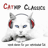 Play & Download Catnip Classics by Various Artists | Napster