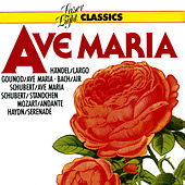 Play & Download Classics - Ave Maria by Various Artists | Napster