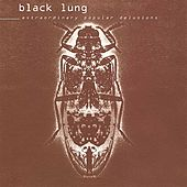 Extraordinary Popular Delusions by Black Lung
