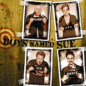 Play & Download The Hits Vol. Sue! by Boys Named Sue | Napster