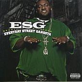 Everyday Street Gangsta by E.S.G.