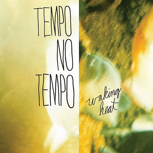 Play & Download Waking Heat by Tempo No Tempo | Napster