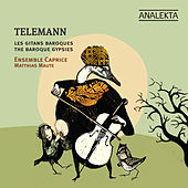 Play & Download Telemann And The Baroque Gypsies by Various Artists | Napster