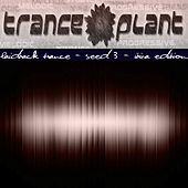 Play & Download Tranceplant - Laidback Trance - Seed 3 Ibiza Edition by Various Artists | Napster