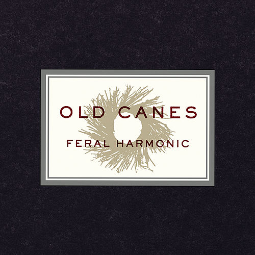 Play & Download Feral Harmonic by Old Canes | Napster