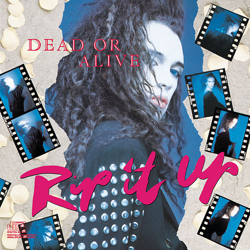 Play & Download Rip It Up: Best Of Dead Or Alive by Dead Or Alive | Napster