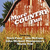 More Country Fun by Various Artists