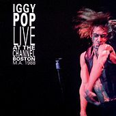 Play & Download Live At the Channel (Boston, MA. 1988) by Iggy Pop | Napster