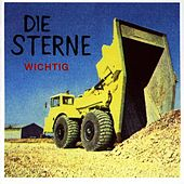 Play & Download Wichtig by Die Sterne | Napster