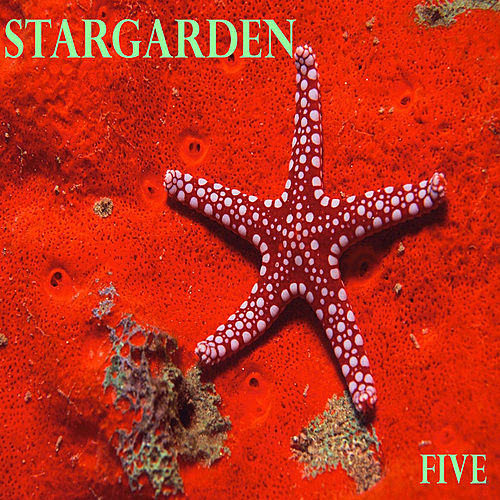 Play & Download Five by Stargarden | Napster