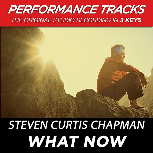 Play & Download What Now (Premiere Performance Plus Track) by Steven Curtis Chapman | Napster