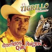 Play & Download Corridos Que Rugen by El Tigrillo Palma | Napster
