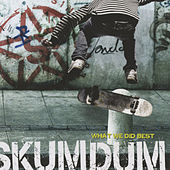 Play & Download What We Did Best by Skumdum | Napster