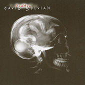 Play & Download God Man by David Sylvian | Napster