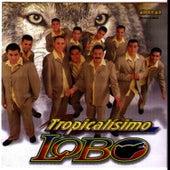Play & Download Lobo al 100 por ciento by Tropicalísimo Lobo | Napster
