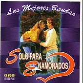 Play & Download Solo Para Enamorados by Various Artists | Napster