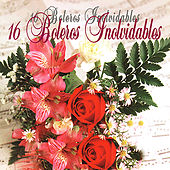 Play & Download 16 Boleros Inovidable by Various Artists | Napster
