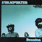 Play & Download Reunion by Swampwater | Napster