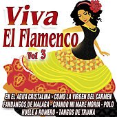 Play & Download Viva El Flamenco Vol.3 by Various Artists | Napster
