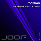 Play & Download Salamander by Magnus | Napster