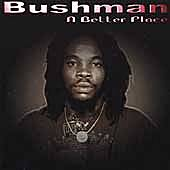 A Better Place by Bushman