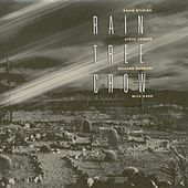 Rain Tree Crow by Rain Tree Crow