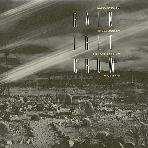 Play & Download Rain Tree Crow by Rain Tree Crow | Napster