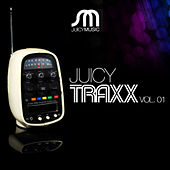 Juicy Traxx Vol 01 by Various Artists