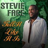 Play & Download Tell It Like It Is by Stevie Face | Napster