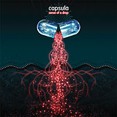 Play & Download Sense of a Drop by Capsula | Napster