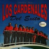 Play & Download Clásicos de Oro de Los Cardenales del Exito by Cardenales del Exito | Napster
